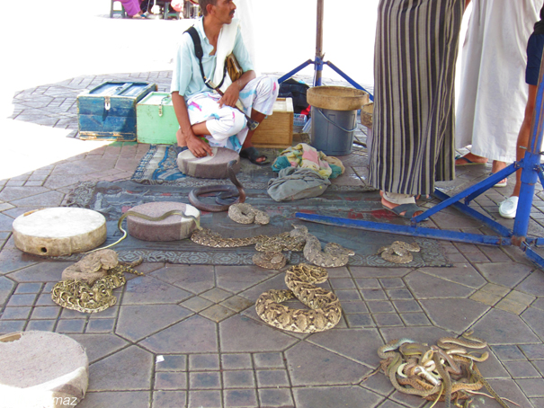 The infamous snake charmers in Jemaa el-Fnaa.